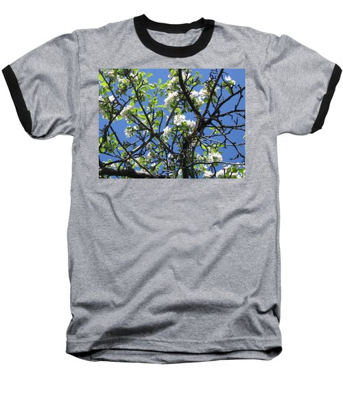 Mn Apple Blossoms Baseball T-Shirt by Barbara Yearty
