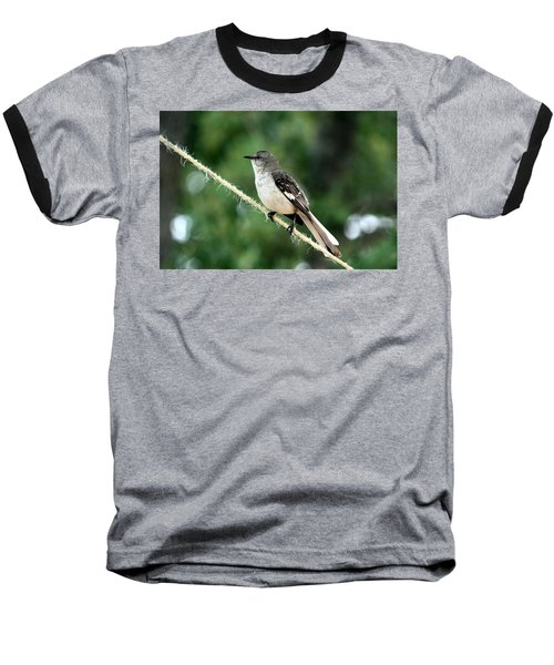 Mockingbird On Rope Baseball T-Shirt