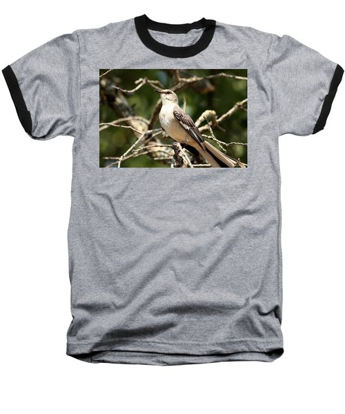 Baseball T-Shirt featuring the photograph Mockingbird  by Sheila Brown
