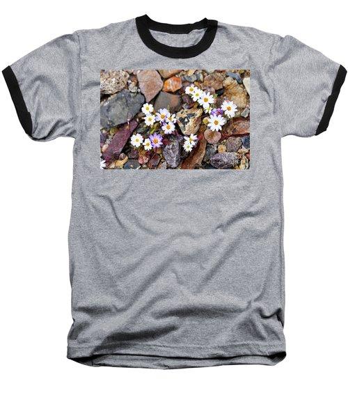 Mojave Desertstar Baseball T-Shirt by Michele Penner