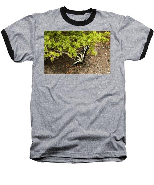 Momentary Rest Stop Baseball T-Shirt