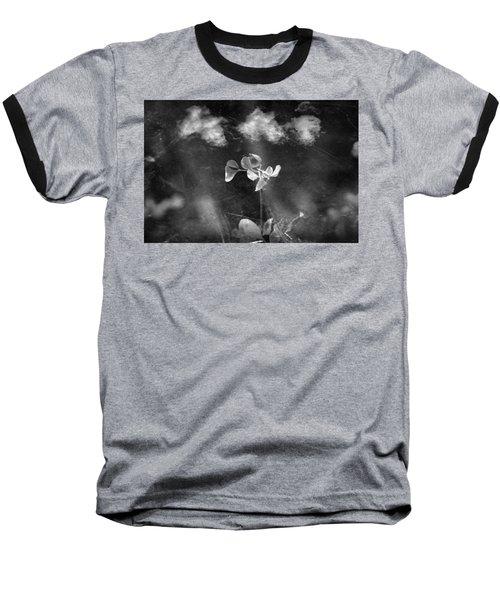 Momentum  Baseball T-Shirt