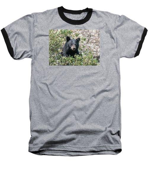 Momma Black Bear Eating Berries Baseball T-Shirt