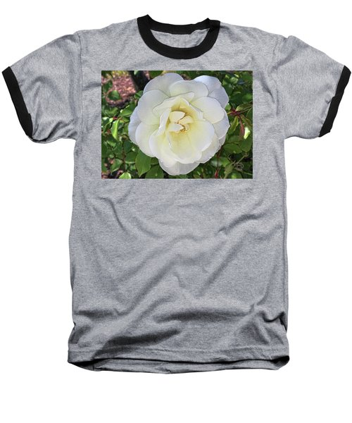 Baseball T-Shirt featuring the photograph Moms Rose by Daniel Hebard