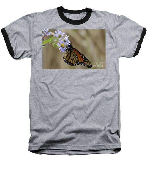 Monarch 2015 Baseball T-Shirt
