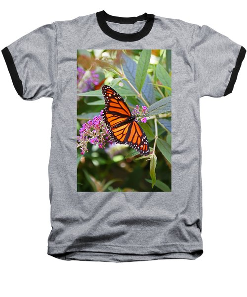 Monarch Butterfly 2 Baseball T-Shirt by Allen Beatty