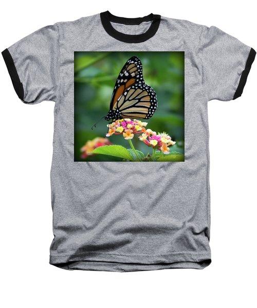 Monarch Butterfly Art II Baseball T-Shirt