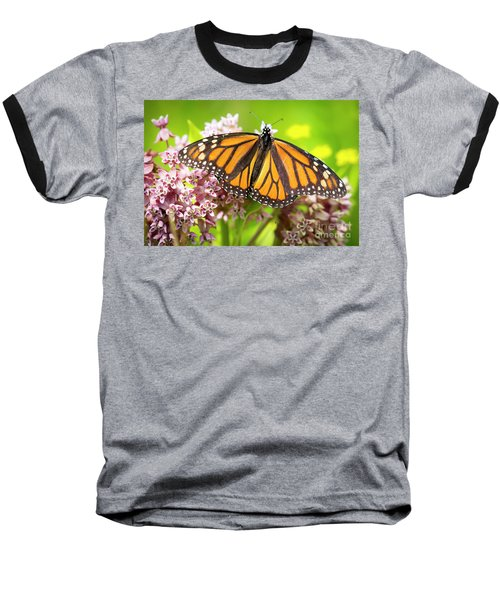 Baseball T-Shirt featuring the photograph Monarch Butterfly Closeup  by Ricky L Jones