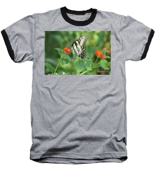 Monarch Butterfly Baseball T-Shirt by Debra Crank
