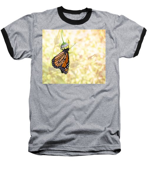 Monarch Butterfly Hanging On Wildflower Baseball T-Shirt