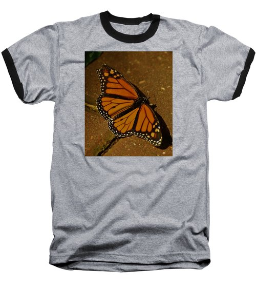 Baseball T-Shirt featuring the photograph Monarch Butterfly by Ramona Whiteaker