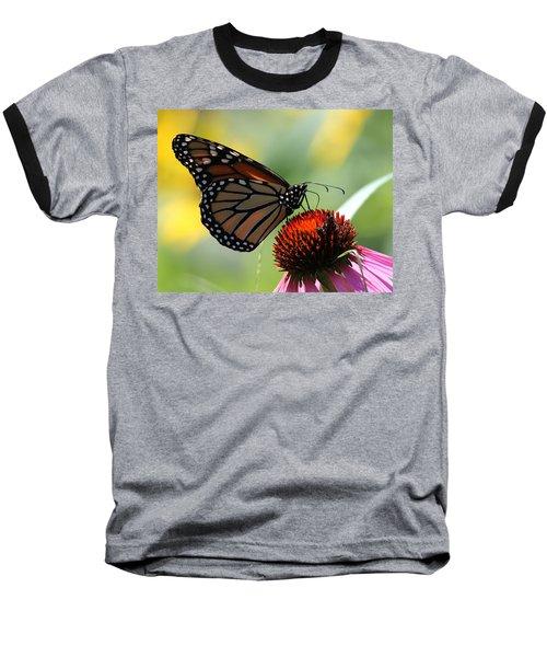 Monarch Butterfly Stony Brook New York Baseball T-Shirt by Bob Savage