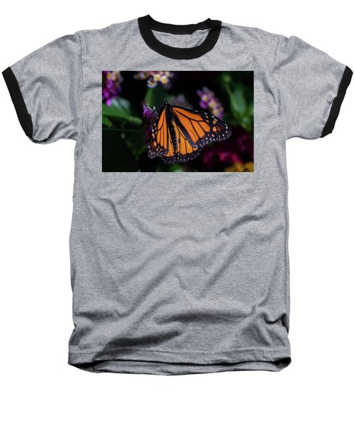 Baseball T-Shirt featuring the photograph Monarch by Jay Stockhaus