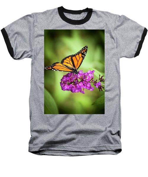 Monarch Moth On Buddleias Baseball T-Shirt