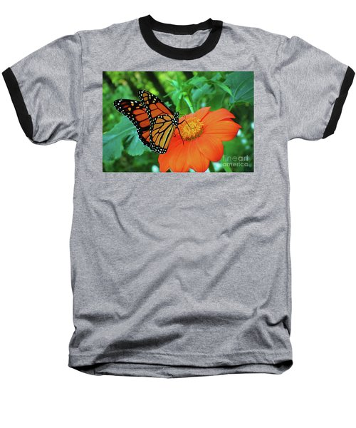 Monarch On Mexican Sunflower Baseball T-Shirt