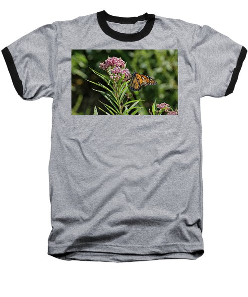 Baseball T-Shirt featuring the photograph Monarch On Milkweed by Sandy Keeton