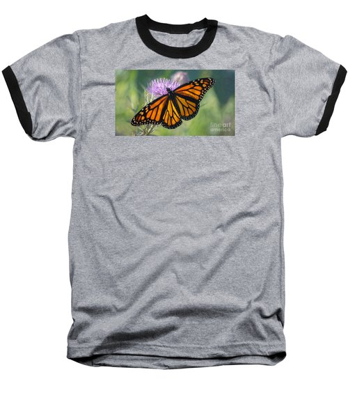 Monarch's Beauty Baseball T-Shirt by Rima Biswas