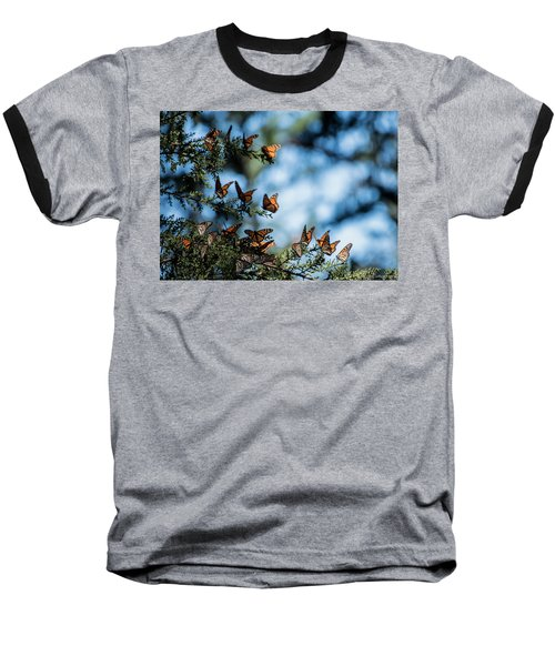 Monarchs In The Tree Baseball T-Shirt