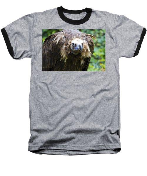 Monk Vulture 3 Baseball T-Shirt by Heiko Koehrer-Wagner