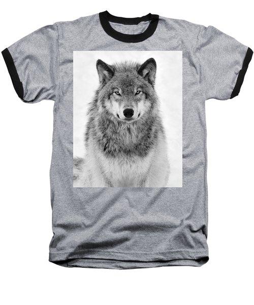 Monotone Timber Wolf  Baseball T-Shirt by Tony Beck