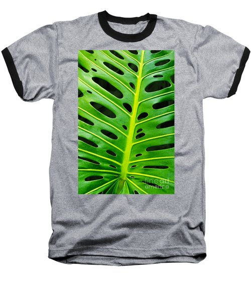 Monstera Leaf Baseball T-Shirt by Carlos Caetano
