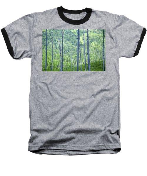 Montana Trees Baseball T-Shirt
