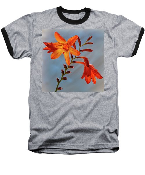Montbretia 1 Baseball T-Shirt
