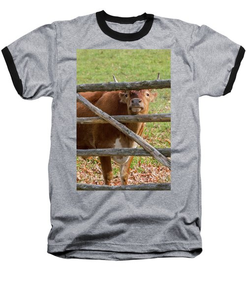 Baseball T-Shirt featuring the photograph Moo by Bill Wakeley