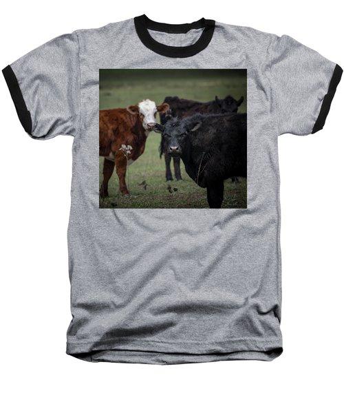 Moo Baseball T-Shirt