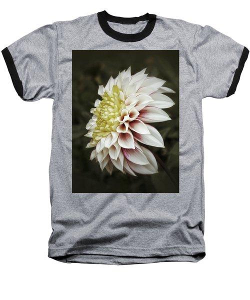 Moody Dahlia  Baseball T-Shirt by Karen Stahlros