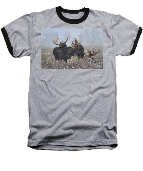 Baseball T-Shirt featuring the photograph Moose Antlers In The Snow by Adam Jewell