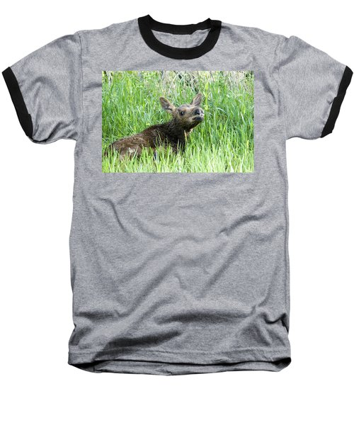 Moose Baby Baseball T-Shirt