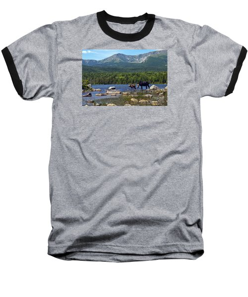 Moose Baxter State Park Maine 2 Baseball T-Shirt by Glenn Gordon