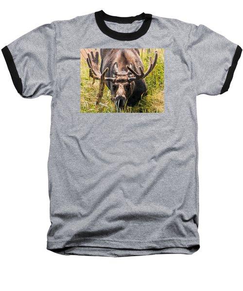 Moose Baseball T-Shirt by Cathy Donohoue