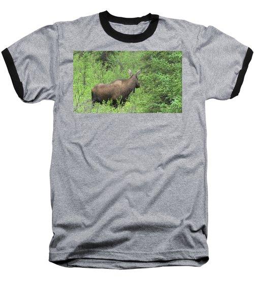 Moose Baseball T-Shirt