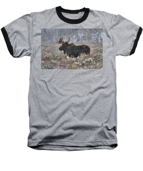 Baseball T-Shirt featuring the photograph Moose In The Snowy Brush by Adam Jewell