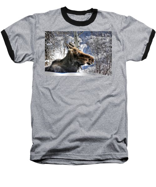 Moose On The Loose Baseball T-Shirt
