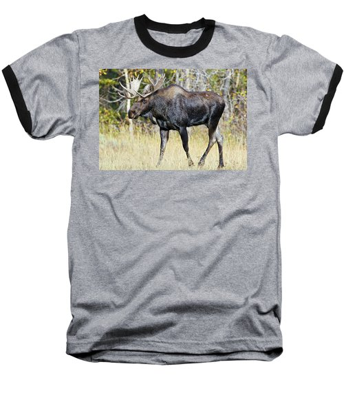 Baseball T-Shirt featuring the photograph Moose On The Move by Wesley Aston