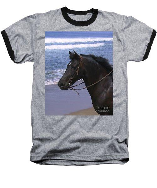 Morgan Head Horse On Beach Baseball T-Shirt