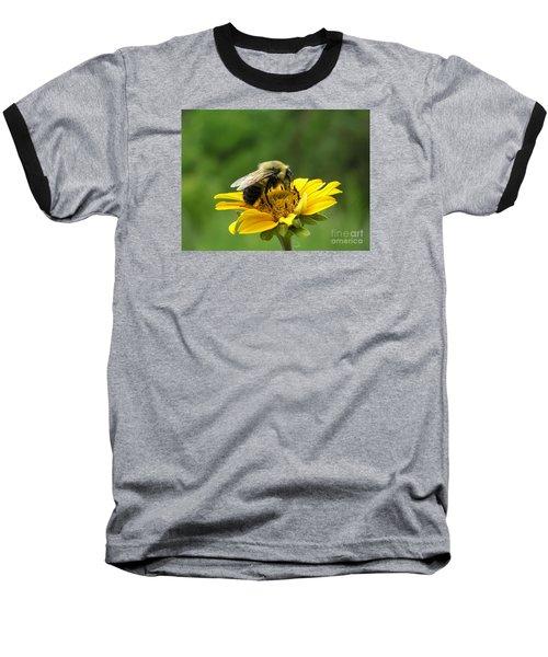 Morning Bee Baseball T-Shirt by Susan  Dimitrakopoulos