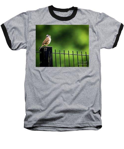 Morning Call Baseball T-Shirt