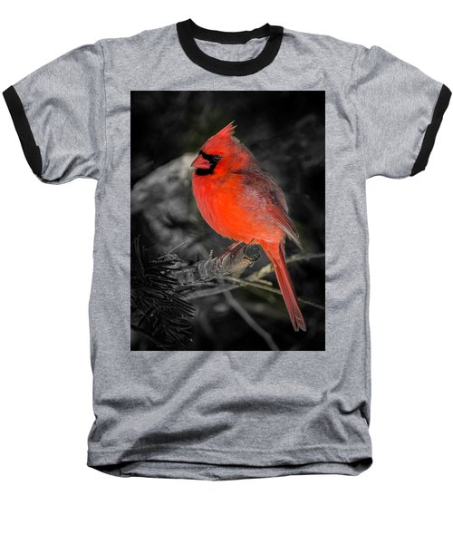 Morning Cardinal C Baseball T-Shirt
