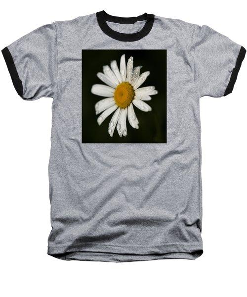 Morning Daisy Baseball T-Shirt by Dan Hefle