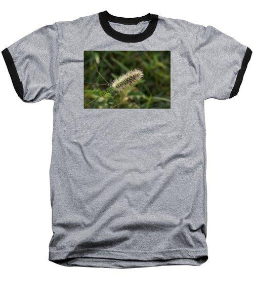 Morning Dew Baseball T-Shirt by Heidi Poulin