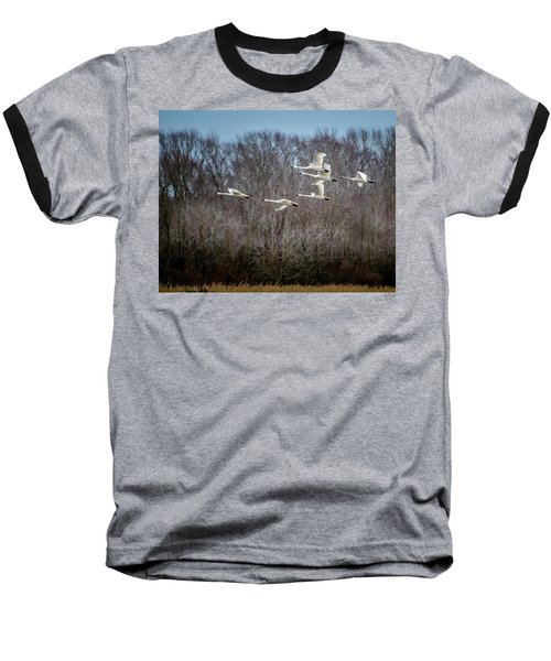 Morning Flight Of Tundra Swan Baseball T-Shirt