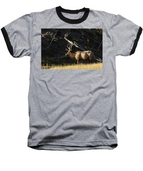 Morning Light Baseball T-Shirt
