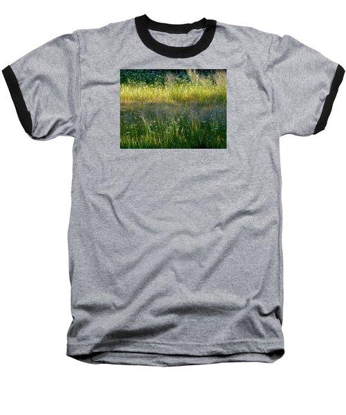 Morning Light On Grant Meadow Baseball T-Shirt by Amelia Racca