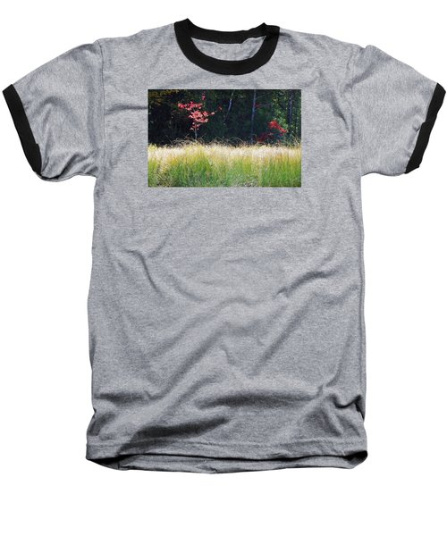 Morning Melody On Hopkins Stream Baseball T-Shirt