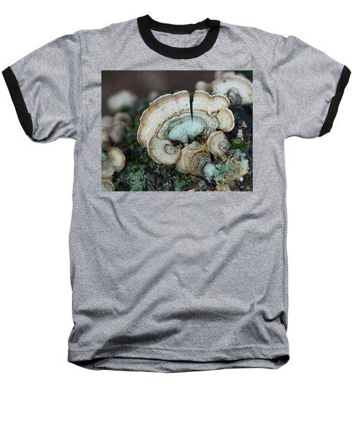Morning Mushroom Baseball T-Shirt