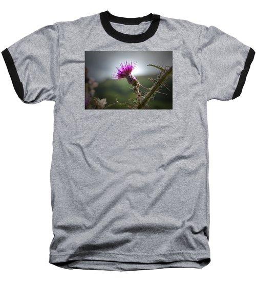 Morning Purple Thistle. Baseball T-Shirt